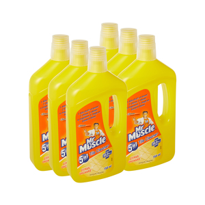 Mr Muscle Citrus Orchard Tile Cleaner 750ml x 6
