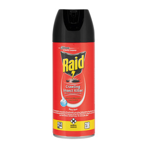 Raid Super Fast Insecticide 300ml