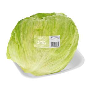 PnP Crisp Lettuce Head